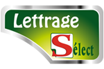Lettrage-select